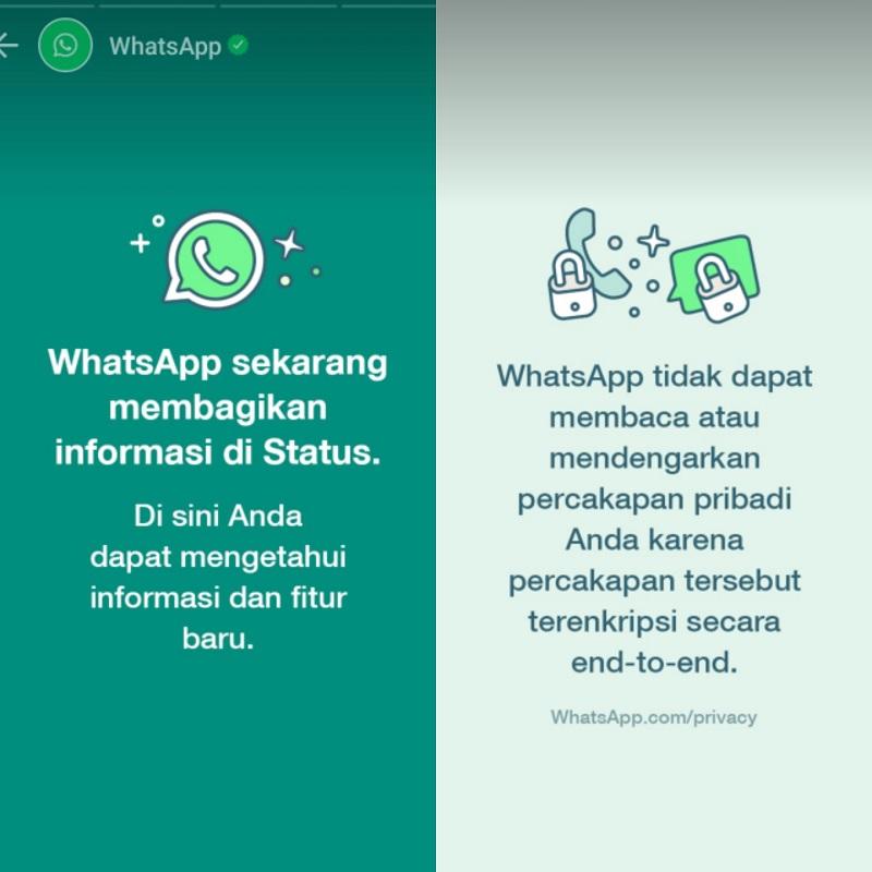 Whatsapp Bikin Geger Karena Tak Mau Ditinggal Pas Sayang-sayangnya